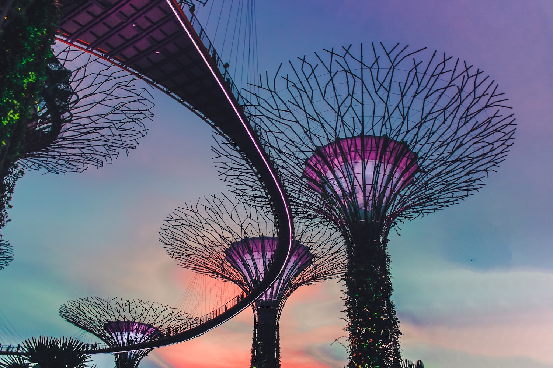 Singapore Joins Brazilian PPH Program